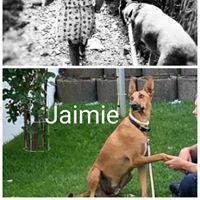 JAMIE (YEIMI)